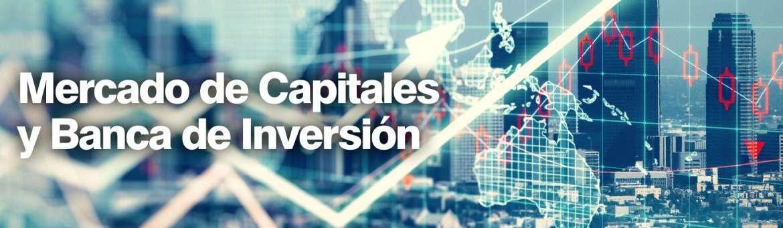 Mercado de Capitales y Banca de Inversión